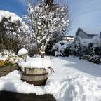 Heute in unserem Garten
