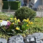 Garten April 2018